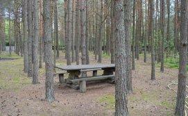 База відпочинку Лісова казка №10