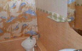Роздільний  душ на першому поверсі Котеджу Берегиня
