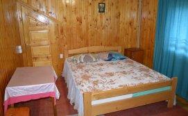 Двомісна кімната апартаментів на 10-15 осіб (з санвузлом) Приватна садиба У Галі