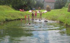 Приватна садиба Карпатський острівець - ставок на території